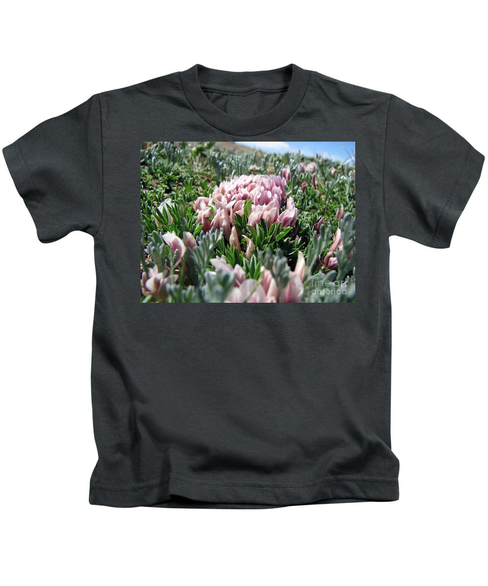 Flowers Kids T-Shirt featuring the photograph Flowers In The Alpine Tundra by Amanda Barcon