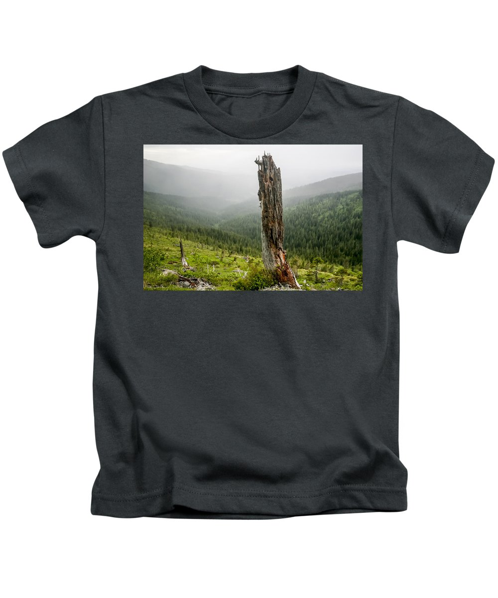 Snag Kids T-Shirt featuring the photograph Forest Remnant by Albert Seger