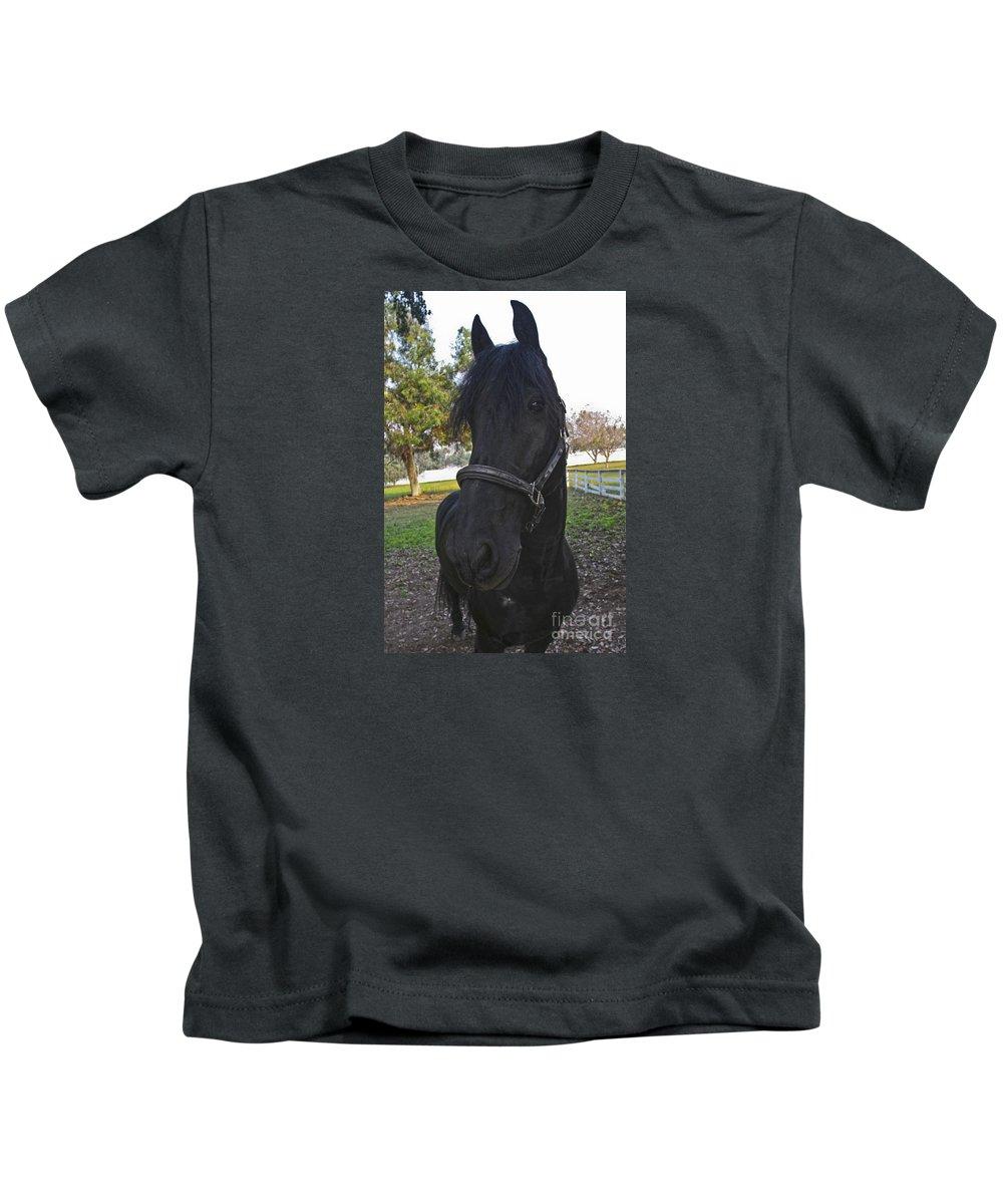 Horses Kids T-Shirt featuring the photograph Friesian Horse Head by Waterdancer