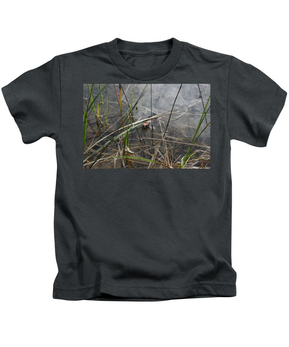 Frog Water Mother Nature Wild Reptile Eyes Lake Marsh Kids T-Shirt featuring the photograph Frog Home by Andrea Lawrence