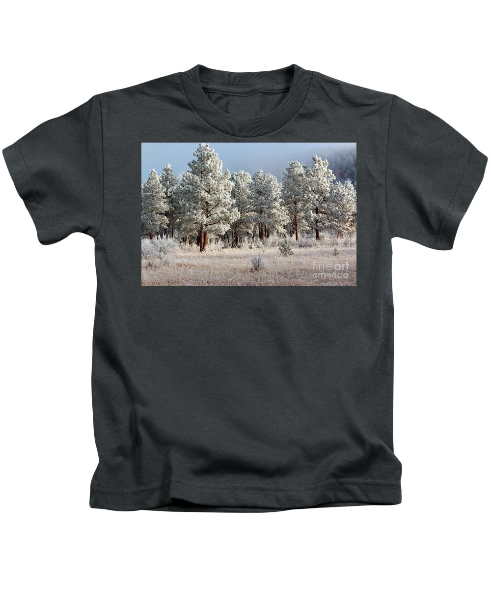 Pikes Peak Kids T-Shirt featuring the photograph Frosty Pikes National Forest by Steve Krull