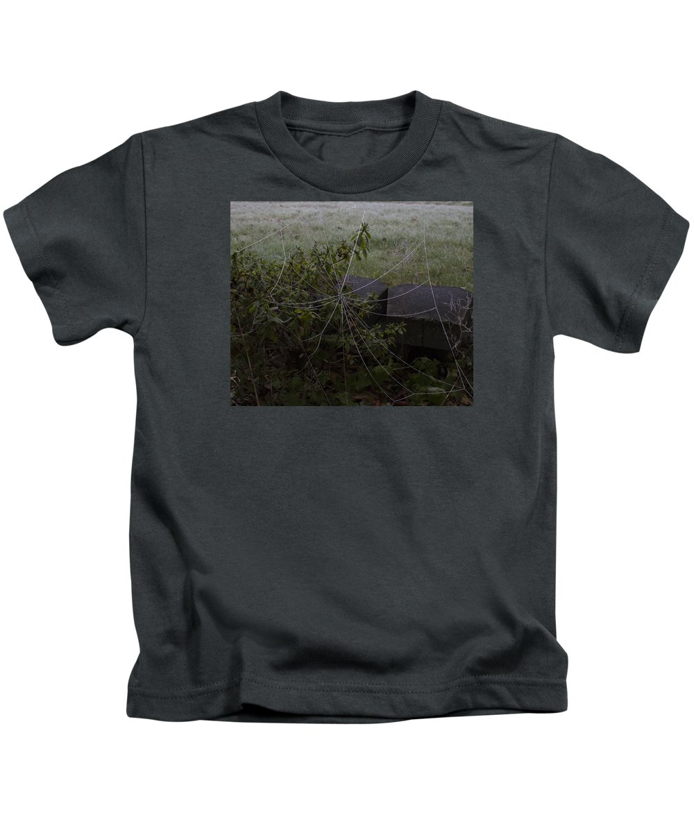 Spider Web Kids T-Shirt featuring the photograph Frozen Web With Light To Dark Background by Mark Denton