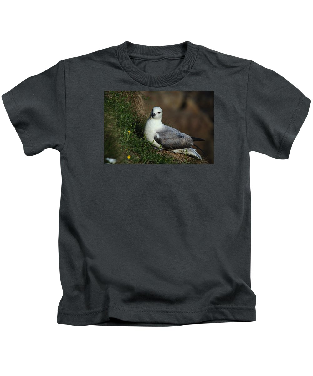 Fulmar Kids T-Shirt featuring the photograph Fulmar Nesting On Cliff by Adrian Wale