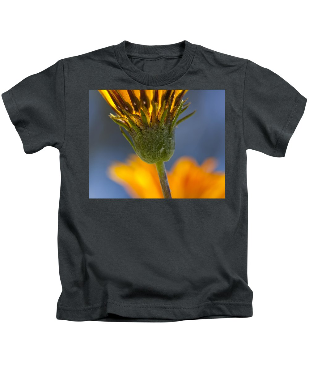 Flowers Kids T-Shirt featuring the photograph Gerbera Daisy by Kelley King