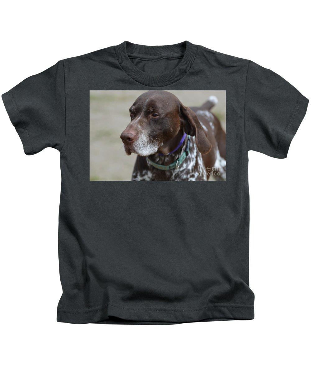 German Shorthaired Pointer Dog Kids T-Shirt featuring the photograph German Shorthaired Pointer Dog by DejaVu Designs