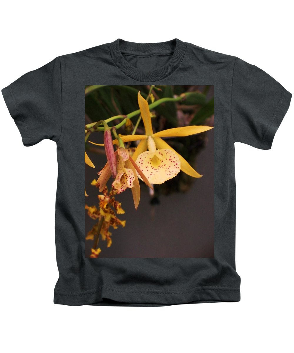 Gold Kids T-Shirt featuring the photograph Gold Yellow Orchid by Eric Schiabor