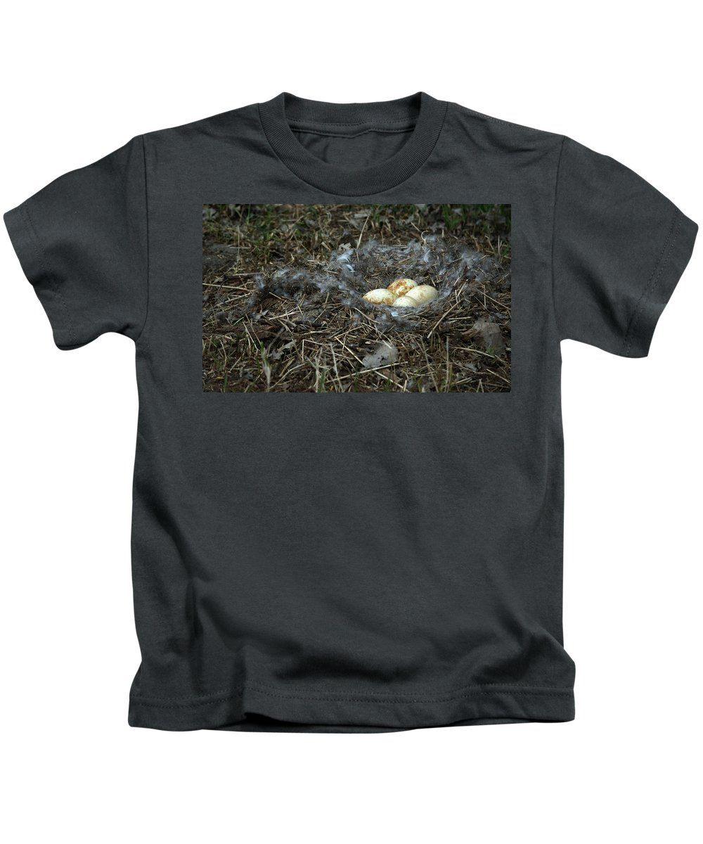 Eggs Kids T-Shirt featuring the photograph Goose Nest by Linda Kerkau