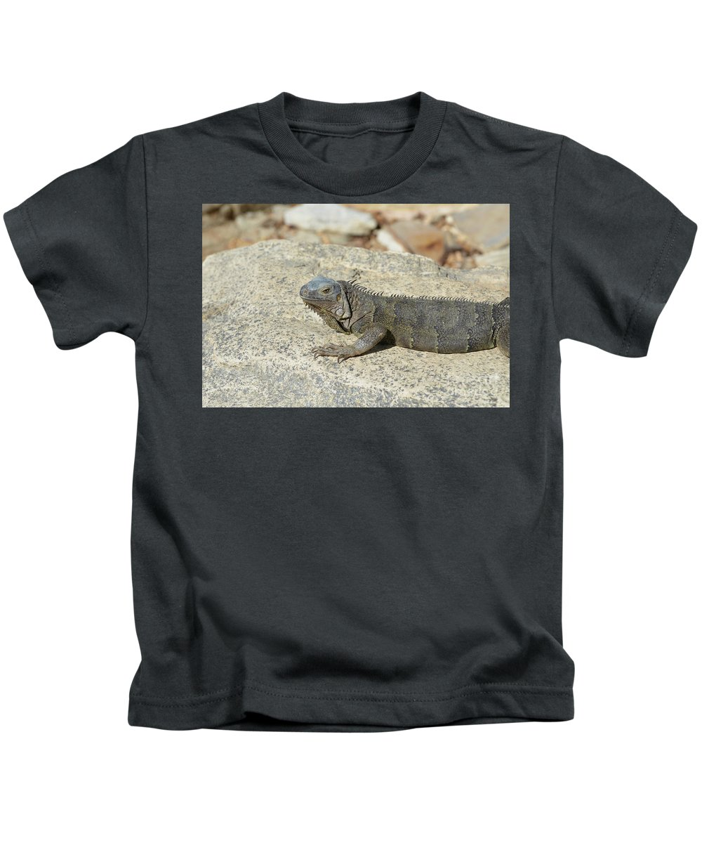 Iguana Kids T-Shirt featuring the photograph Gray Iguana Sunning And Resting On A Large Rock by DejaVu Designs