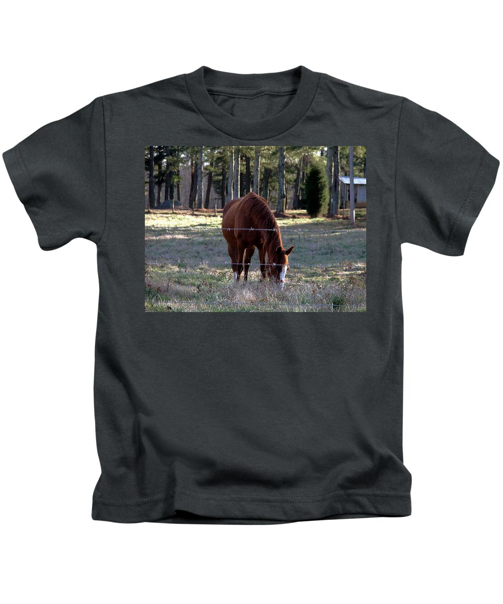 Horse Kids T-Shirt featuring the photograph Grazing by Robert Meanor