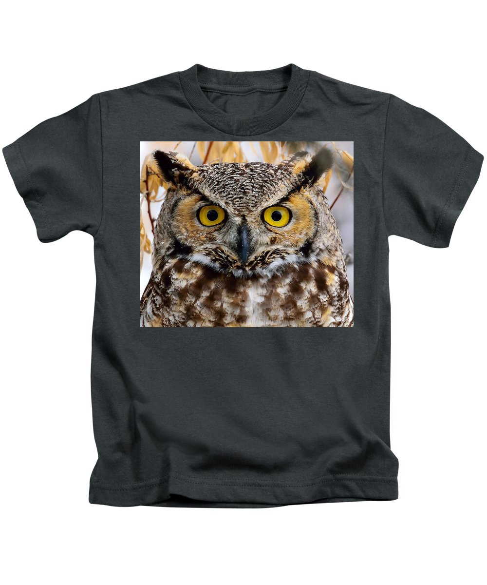 Great Horned Owl Kids T-Shirt featuring the photograph Great Horned Stare by Michael Morse