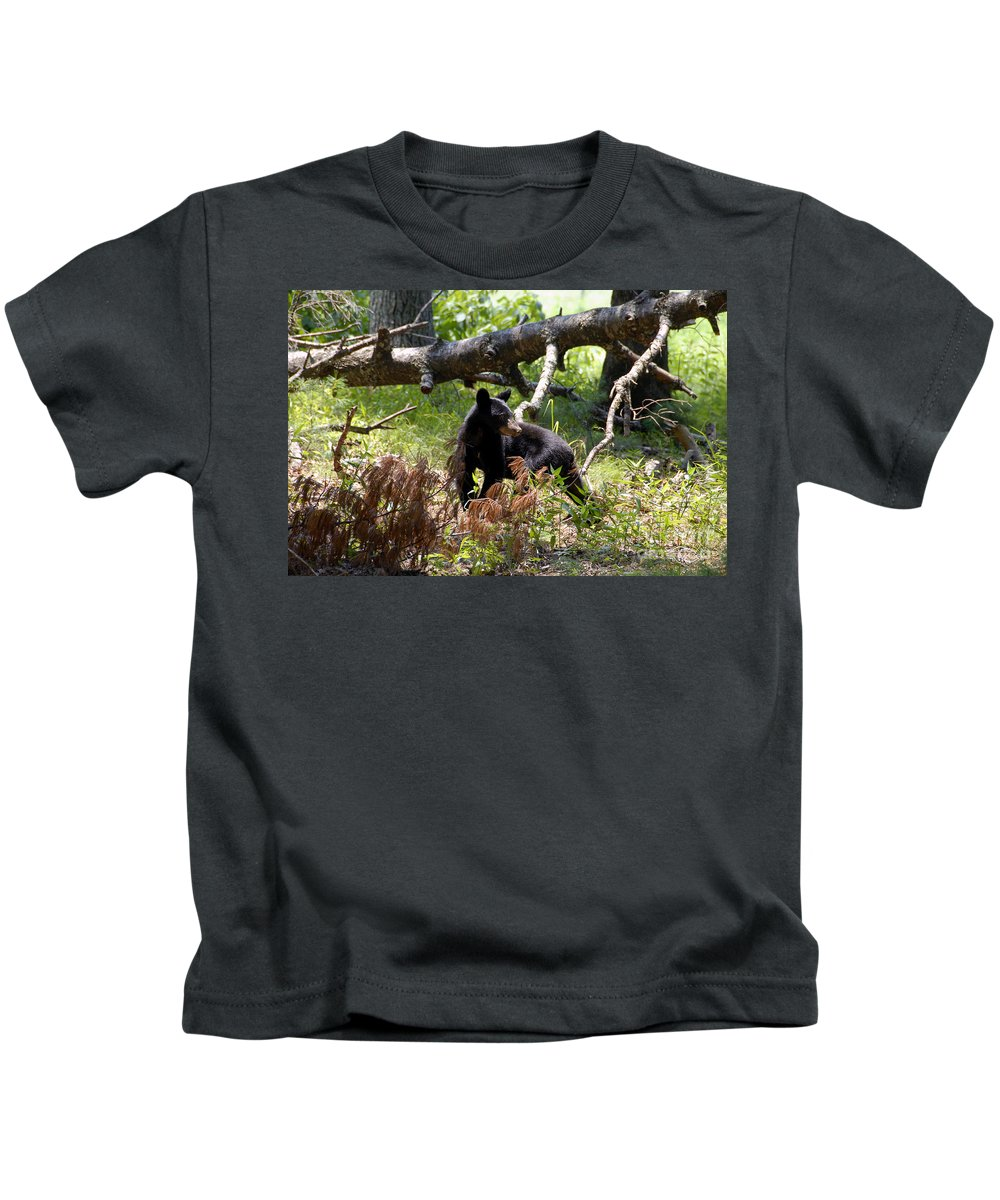 Bear Kids T-Shirt featuring the photograph Great Smoky Mountain Bear by David Lee Thompson