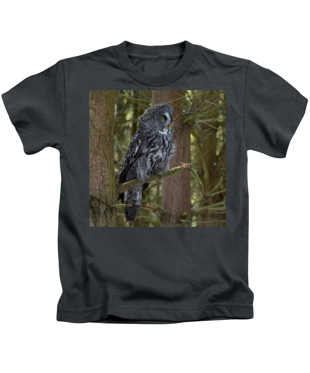 Owl Kids T-Shirt featuring the photograph Grey Owl 4 by John Winstone