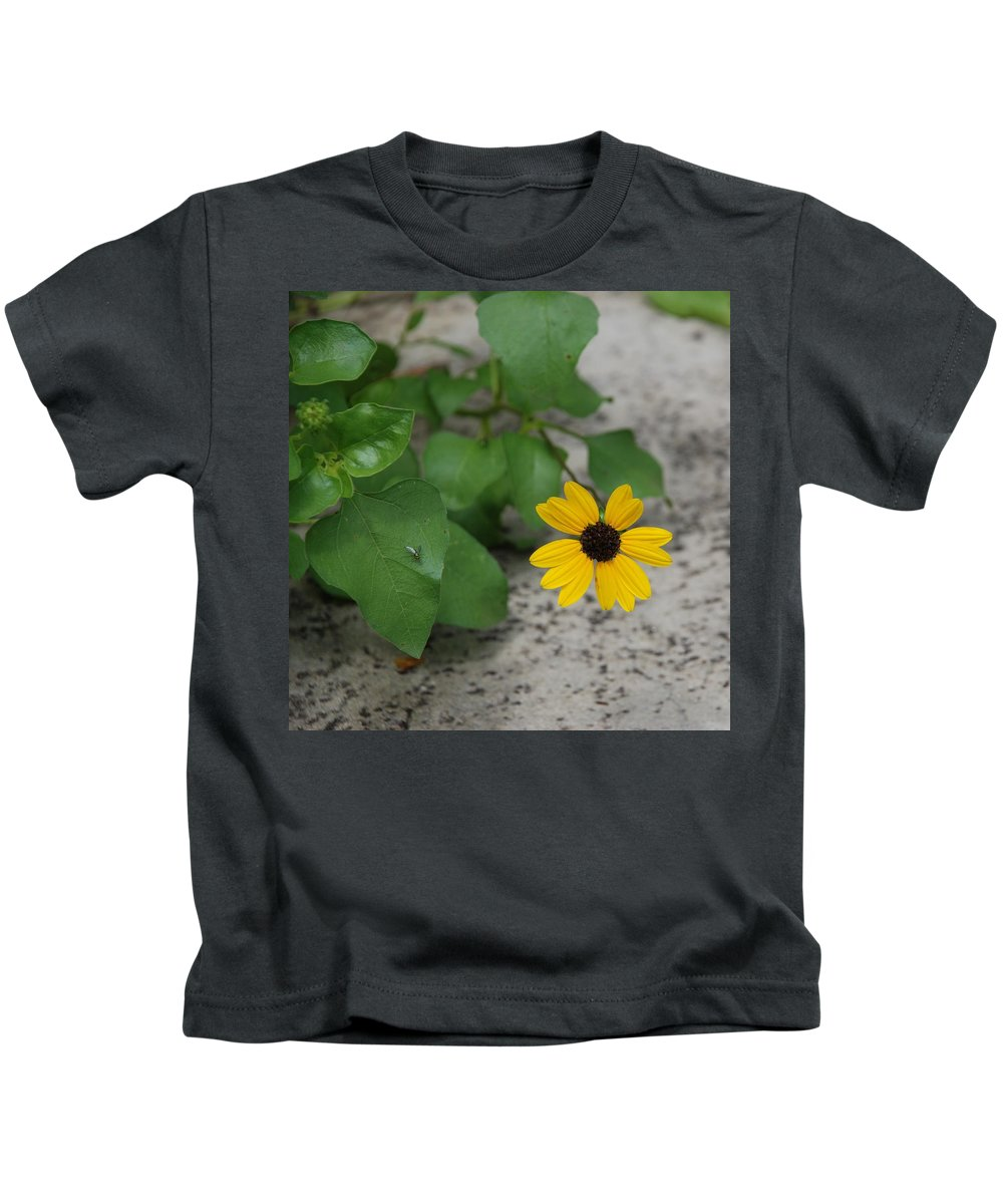 Macro Kids T-Shirt featuring the photograph Grounded Sunflower by Rob Hans