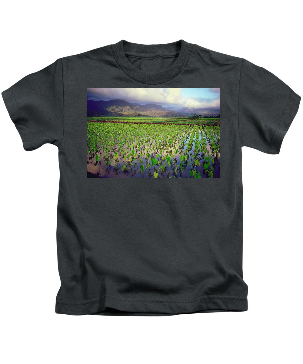 Kauai Kids T-Shirt featuring the photograph Hanalei Valley Taro Ponds by Kevin Smith