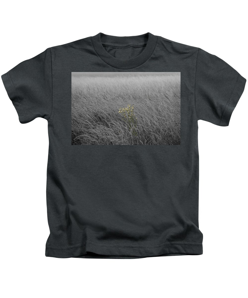 Fog Kids T-Shirt featuring the photograph Hay Daisy In The Fog by Eric Liller