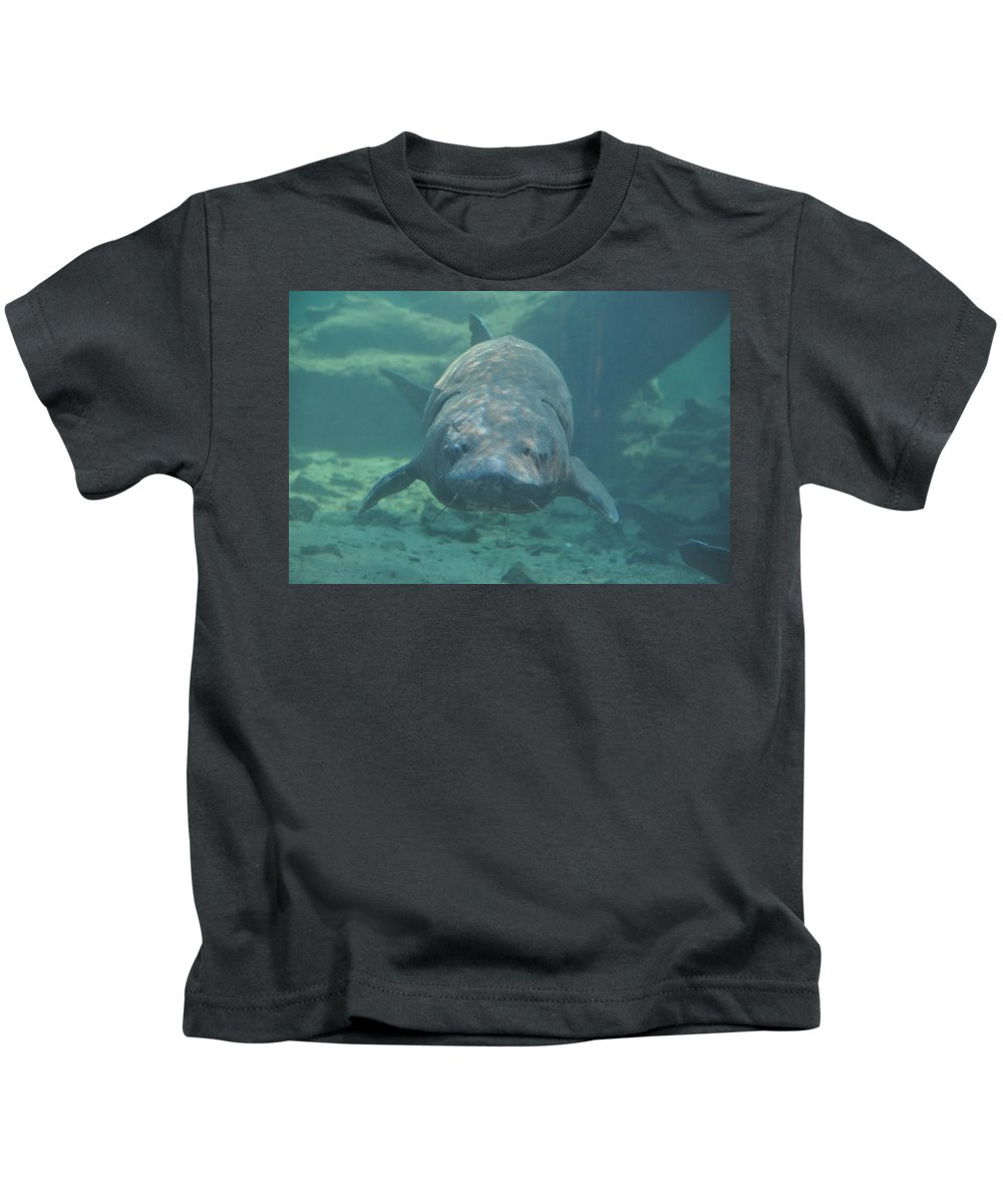 Fish Kids T-Shirt featuring the photograph Herman The Sturgeon by Rich Bodane
