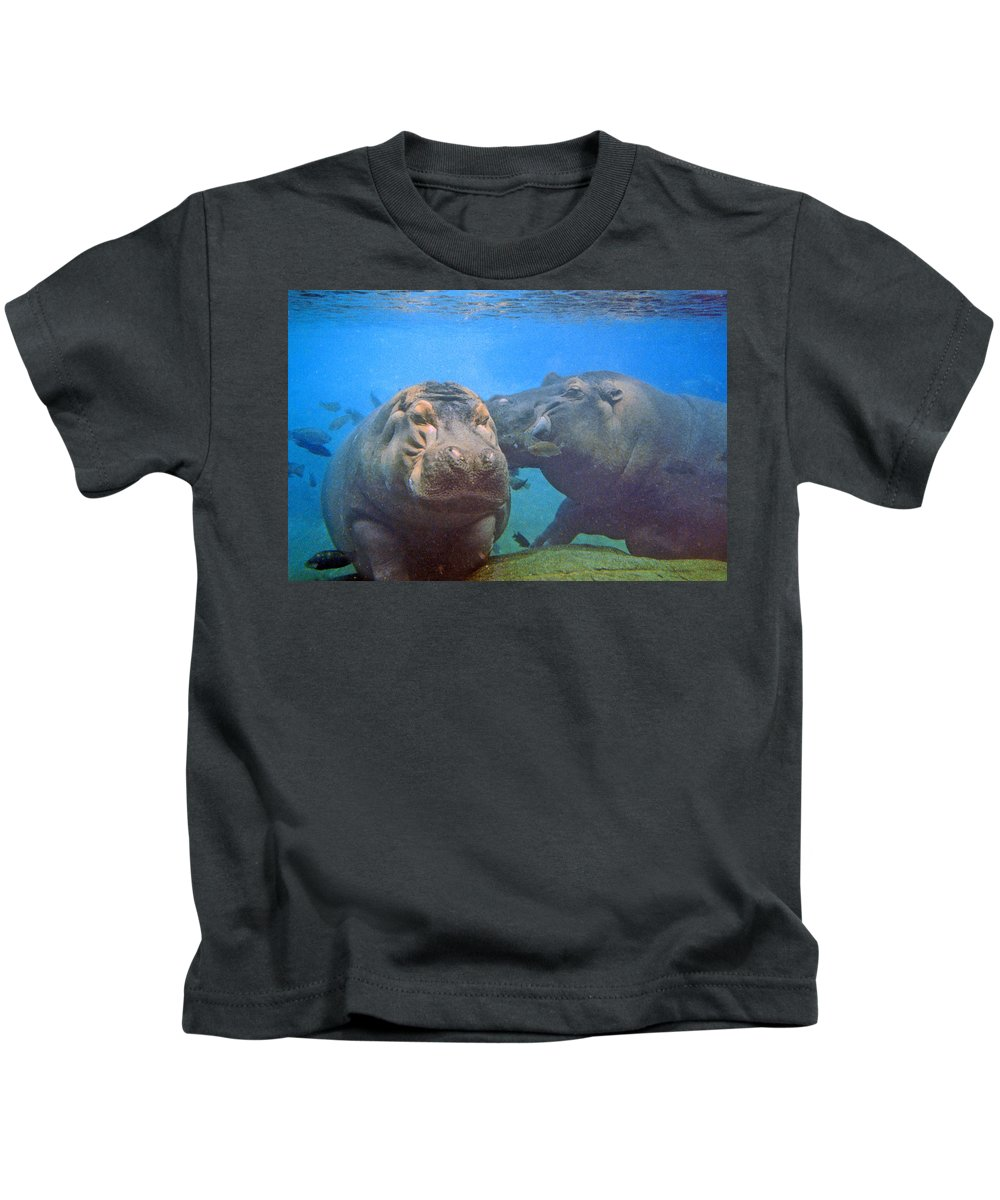 Animals Kids T-Shirt featuring the photograph Hippos In Love by Steve Karol