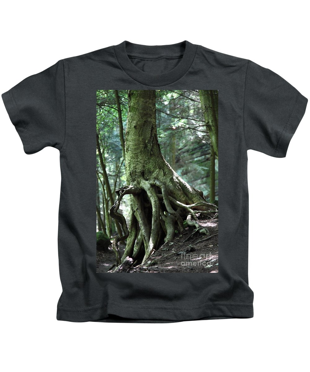 Trees Kids T-Shirt featuring the photograph Hold On To Me. by Amanda Barcon