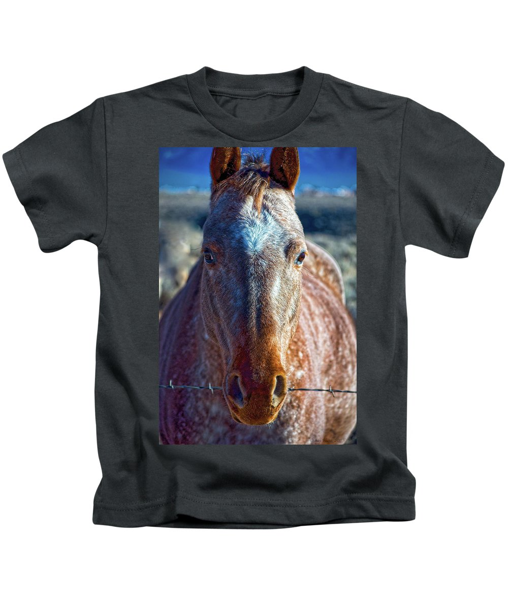 Horse Kids T-Shirt featuring the photograph Howdy Neighbor by Charles Muhle
