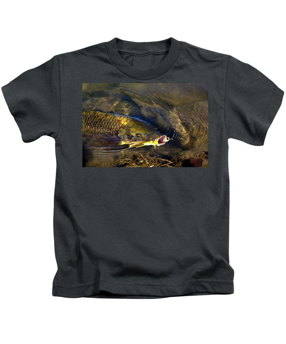 Fish Kids T-Shirt featuring the photograph Hungry Carp by Phyllis Denton