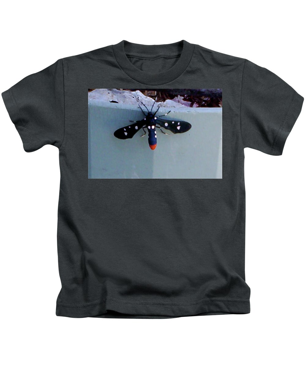 Kids T-Shirt featuring the photograph I Spy by Suzanne Udell Levinger