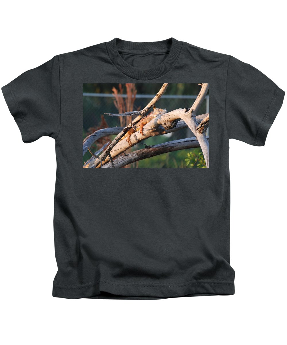 Branches Kids T-Shirt featuring the photograph Igauna On A Stick by Rob Hans