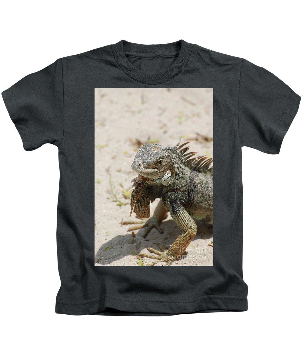 Iguana Kids T-Shirt featuring the photograph Iguana Sitting On A Sandy Beach In Aruba by DejaVu Designs