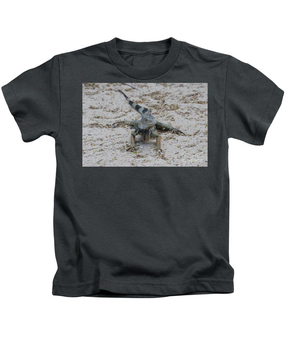 Iguana Kids T-Shirt featuring the photograph Iguana With A Striped Tail On A Sand Beach by DejaVu Designs