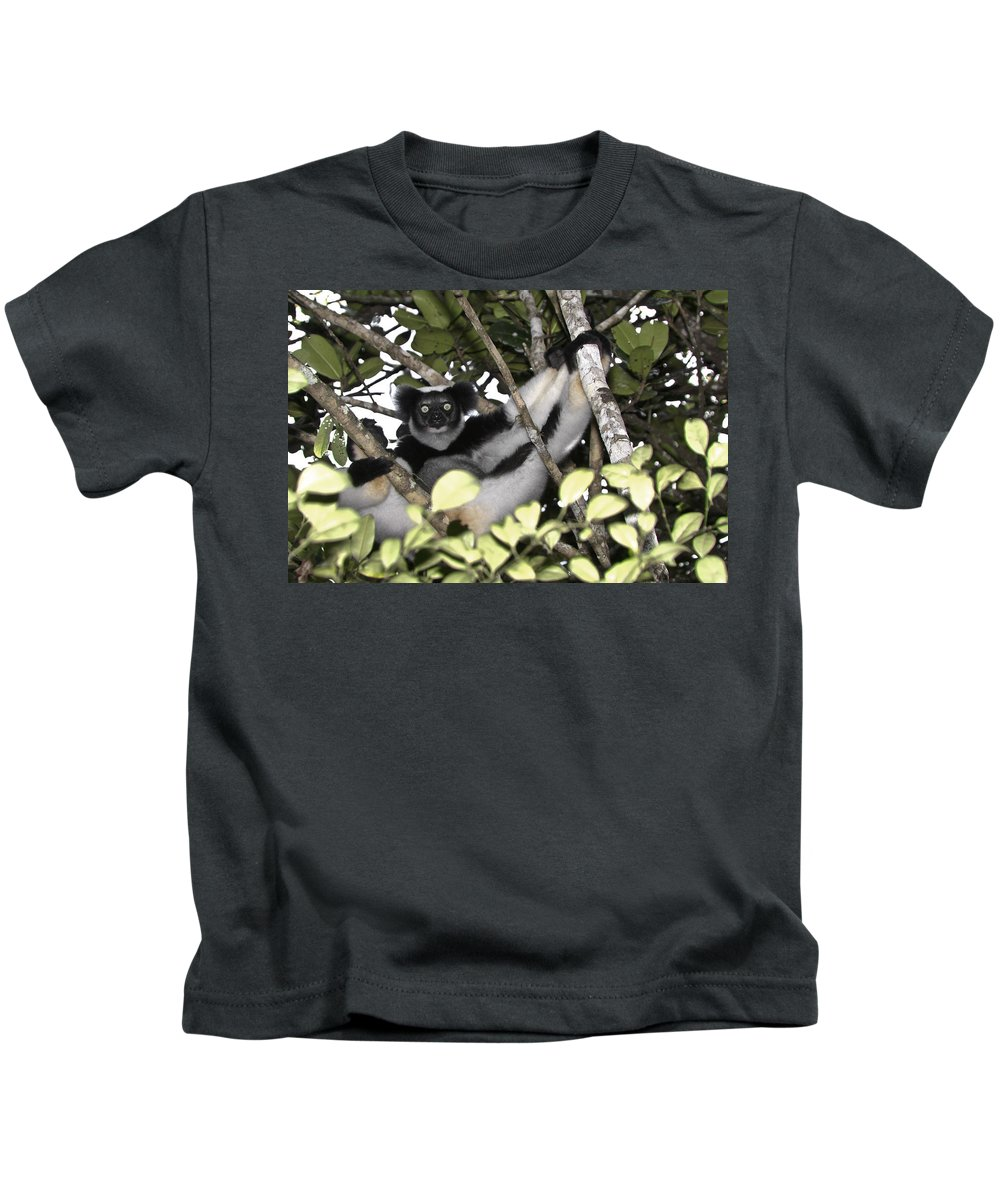Madagascar Kids T-Shirt featuring the photograph Indri Indri by Michele Burgess