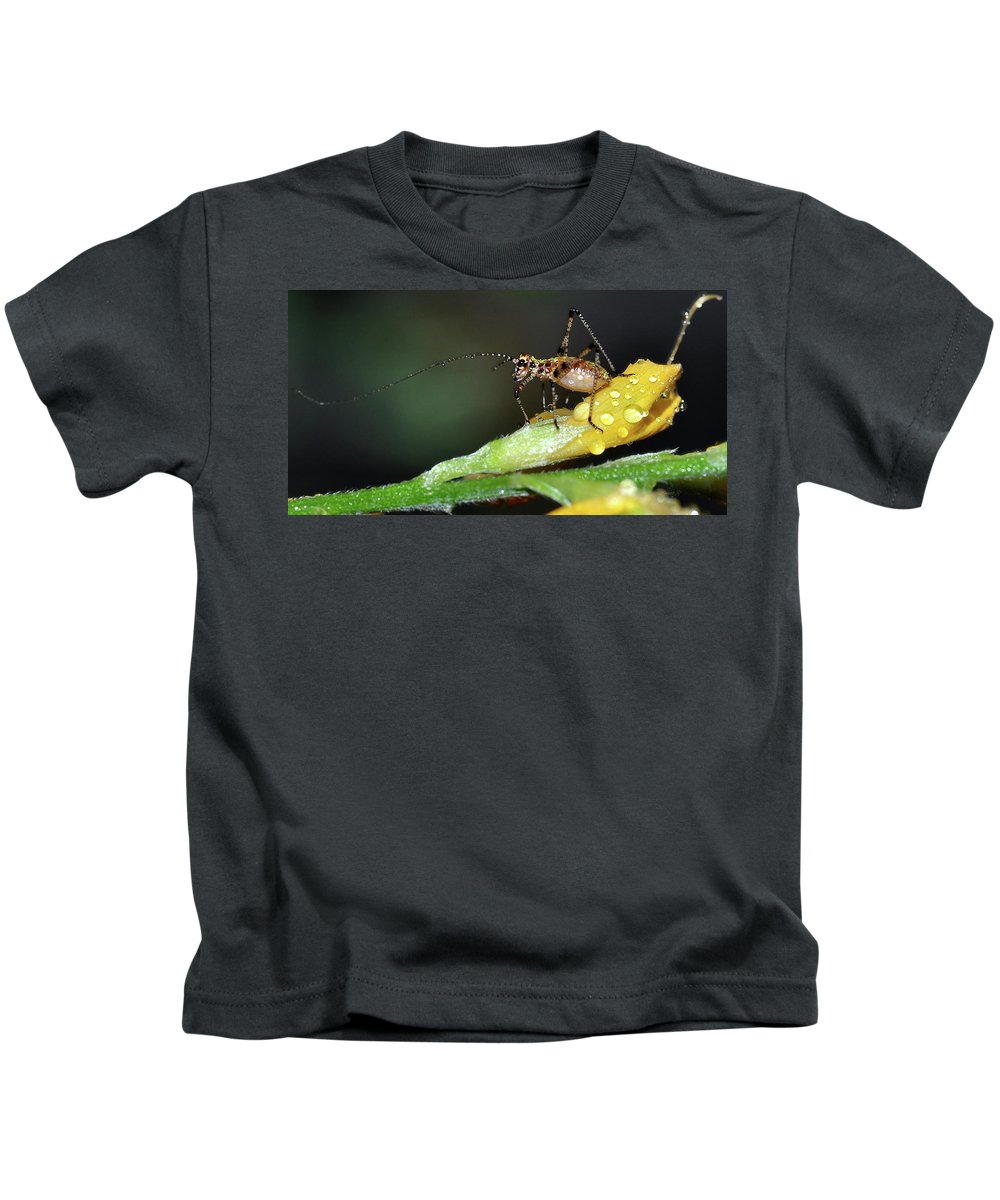 Insect Kids T-Shirt featuring the photograph Insect And Morning Dew by Surjanto Suradji