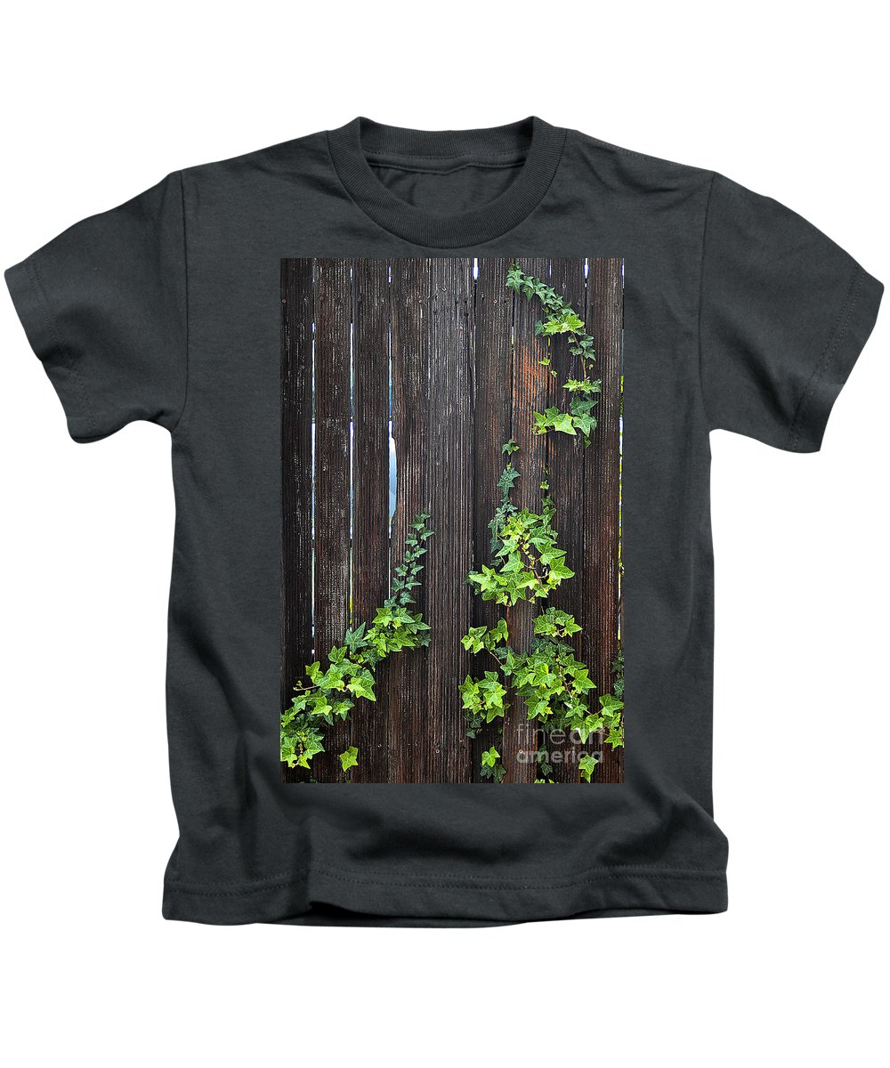 Clay Kids T-Shirt featuring the photograph Ivy On Fence by Clayton Bruster