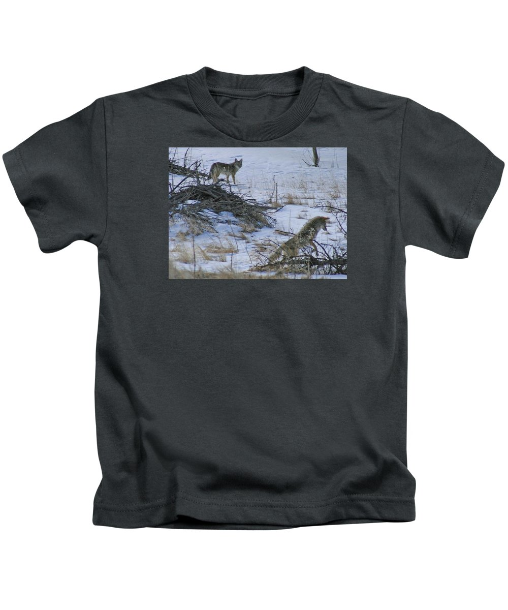 Coyote Kids T-Shirt featuring the photograph Jump On It by Judithann O'Toole