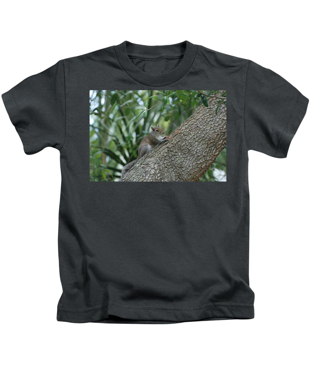 Squirrels Kids T-Shirt featuring the photograph Just Chilling Out by Rob Hans