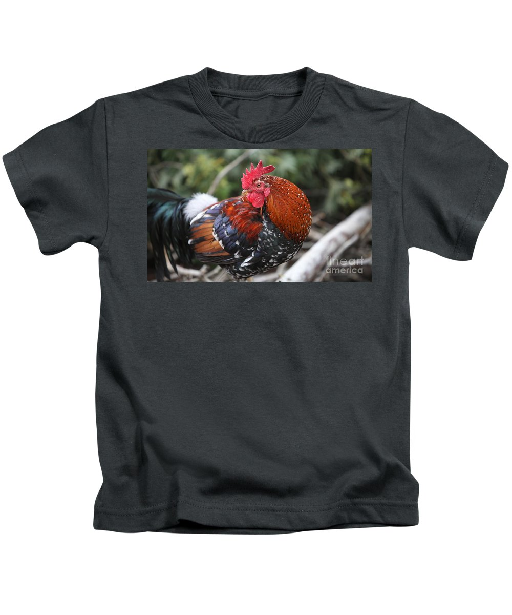 Rooster Kids T-Shirt featuring the photograph Kauai Rooster by Nadine Rippelmeyer
