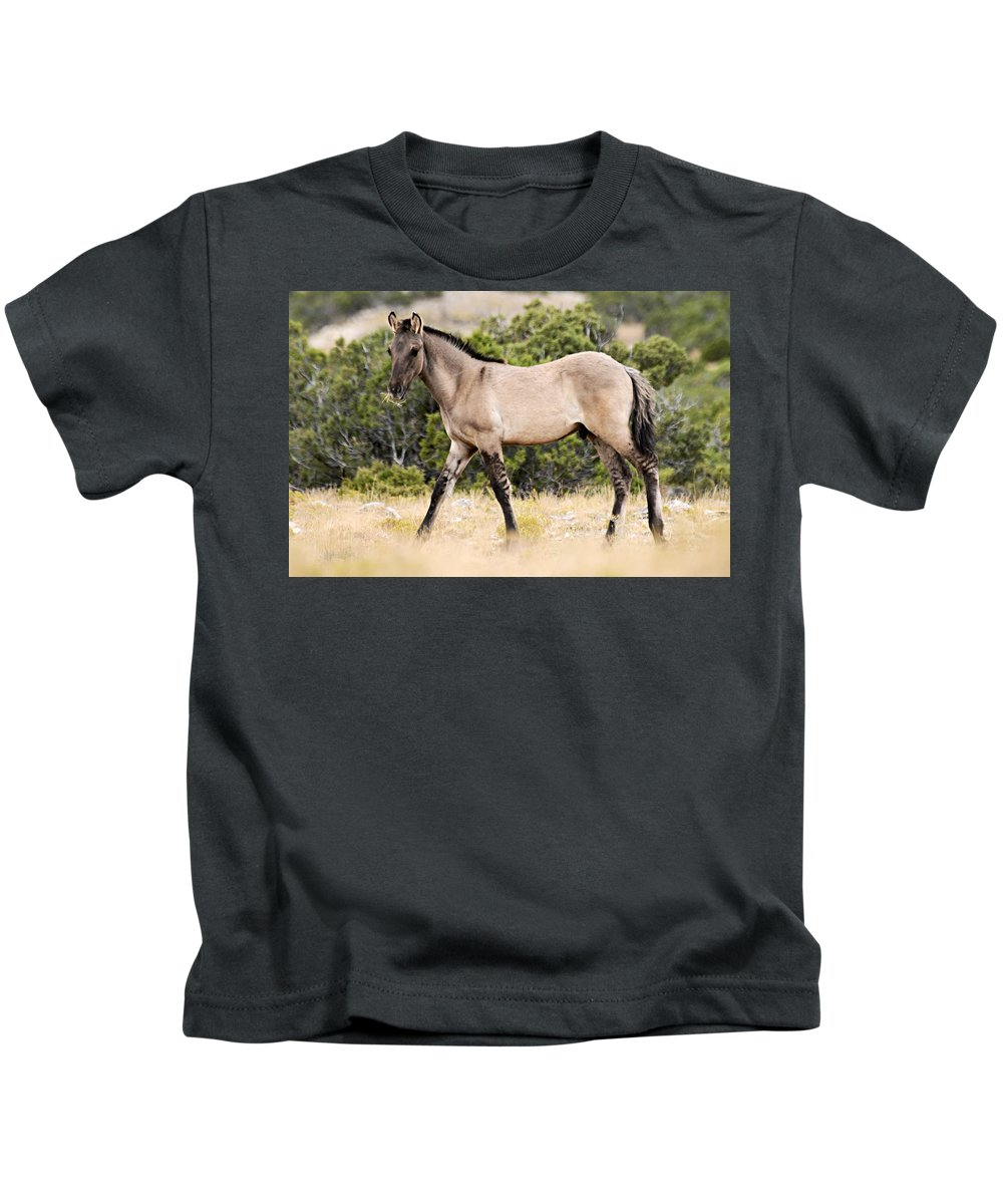 Pryor Mountain Wild Horse Range Kids T-Shirt featuring the photograph Kiger Colt by Larry Ricker