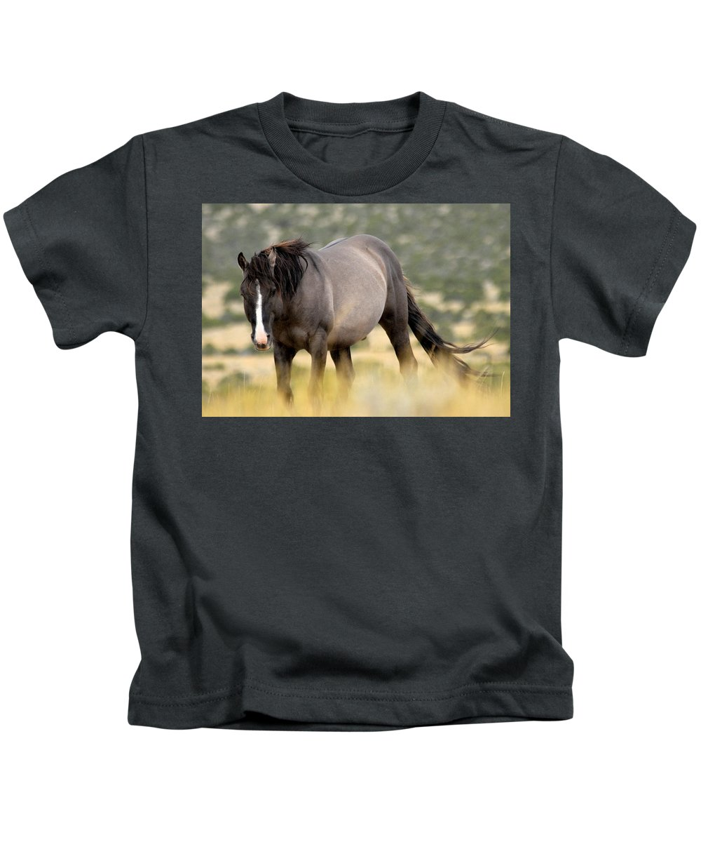 Pryor Mountain Wild Horse Range Kids T-Shirt featuring the photograph Kiger Stallion by Larry Ricker