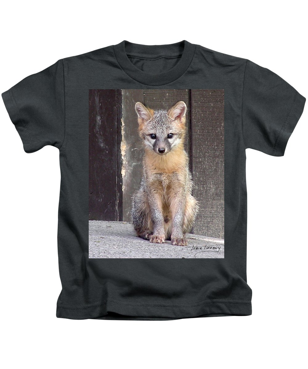 Kit Fox Kids T-Shirt featuring the photograph Kit Fox15 by Torie Tiffany