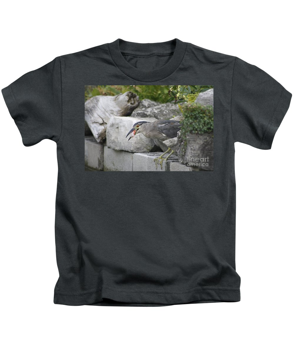 Heron Kids T-Shirt featuring the photograph Koi For Dinner by Adam Schneider