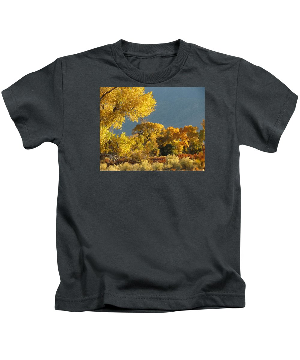 Bishop Kids T-Shirt featuring the photograph Last Light In Bishop 2 by Frank Lee Hawkins