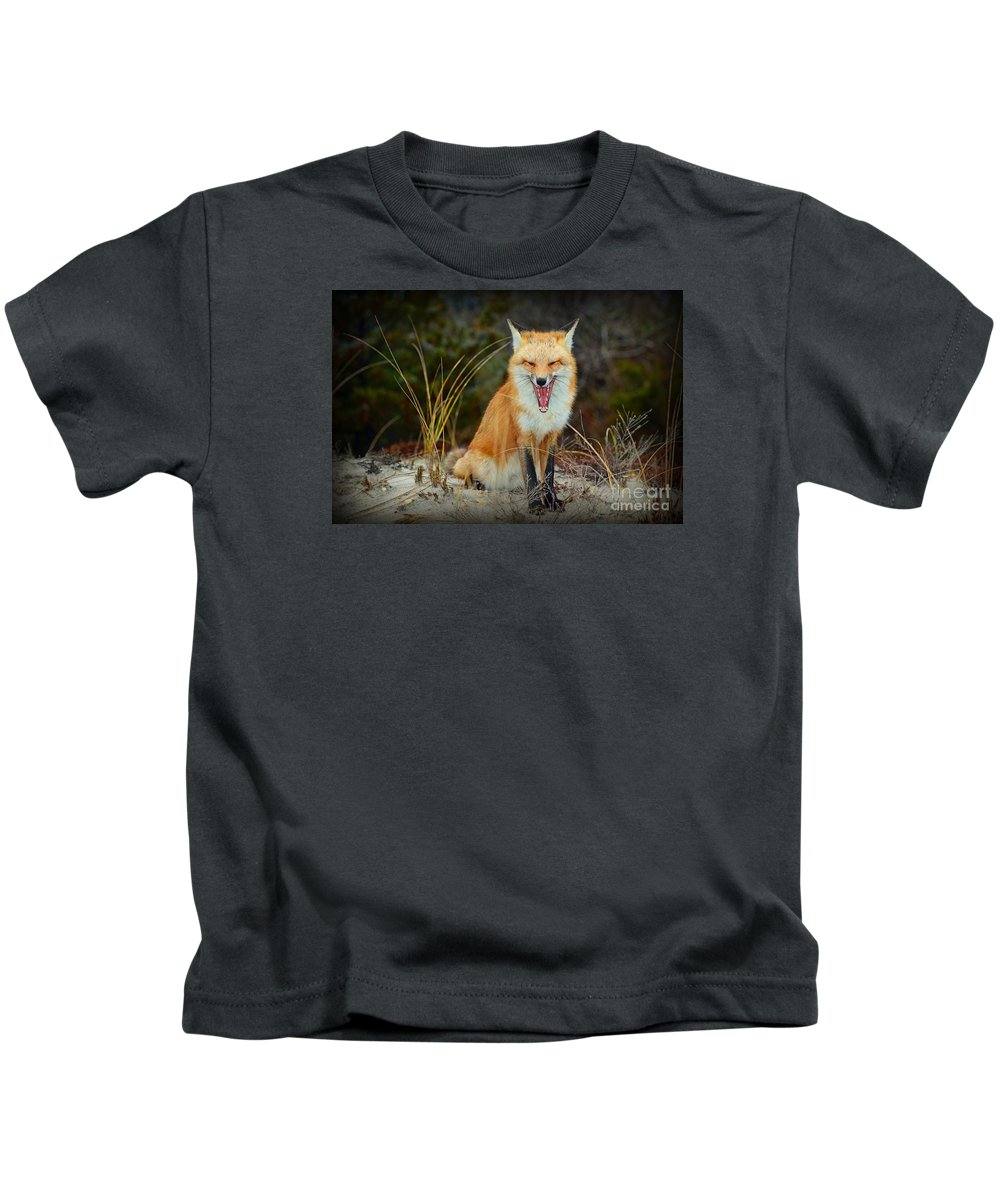 Paul Ward Kids T-Shirt featuring the photograph Laughing Fox by Paul Ward