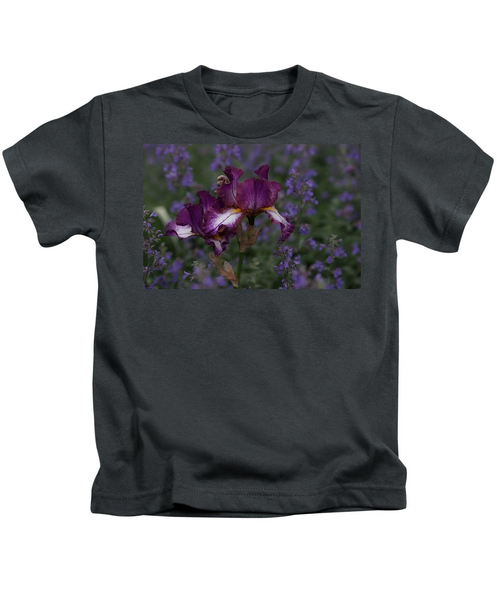Purple Kids T-Shirt featuring the photograph Lavender Field by Carrie Goeringer