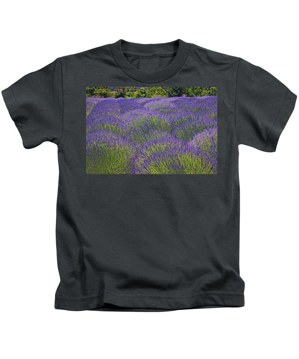 Lavender Kids T-Shirt featuring the photograph Lavender Field by Garry Gay