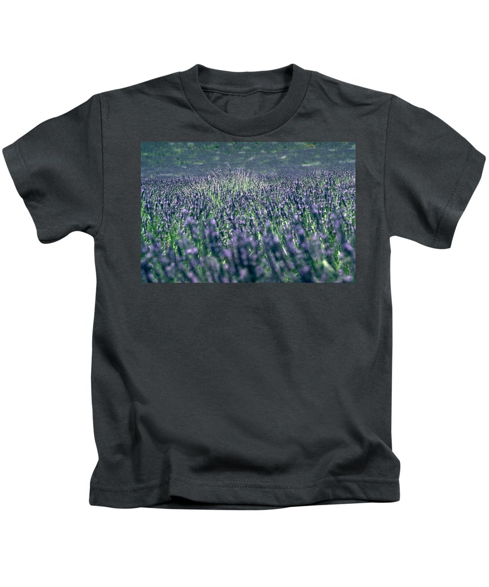 Lavender Kids T-Shirt featuring the photograph Lavender by Flavia Westerwelle