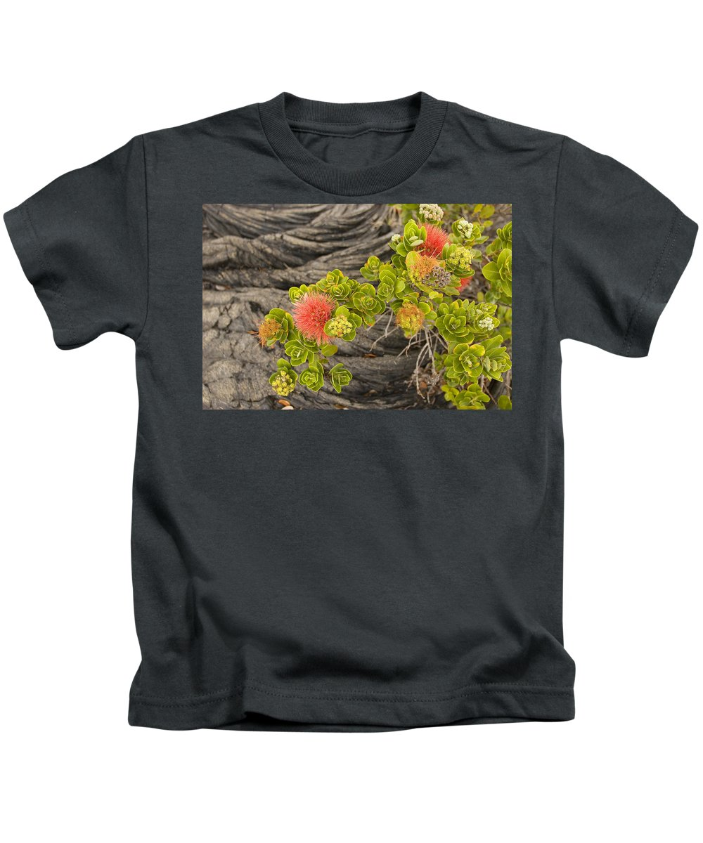 Beginning Kids T-Shirt featuring the photograph Lehua Flower by Ron Dahlquist - Printscapes