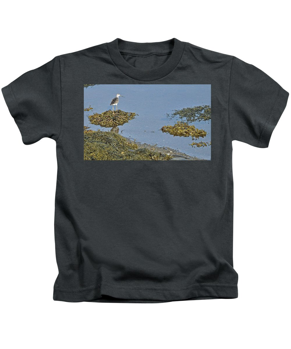 Sandpiper Kids T-Shirt featuring the photograph Lesser Yellowlegs by Colleen English