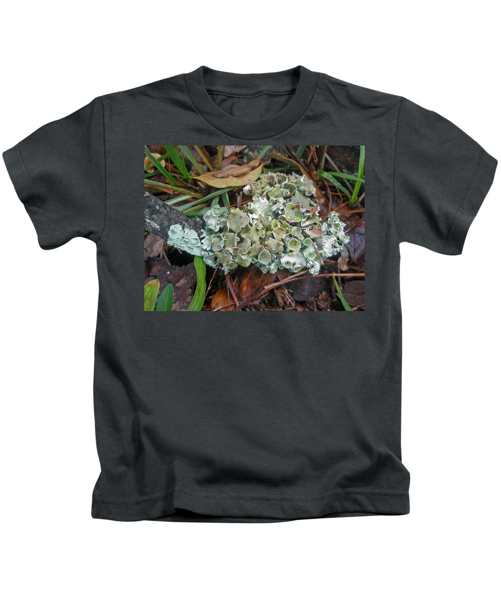 Lichen Kids T-Shirt featuring the photograph Lichen On Dead Branch Outer Banks North Carolina Usa by Mother Nature