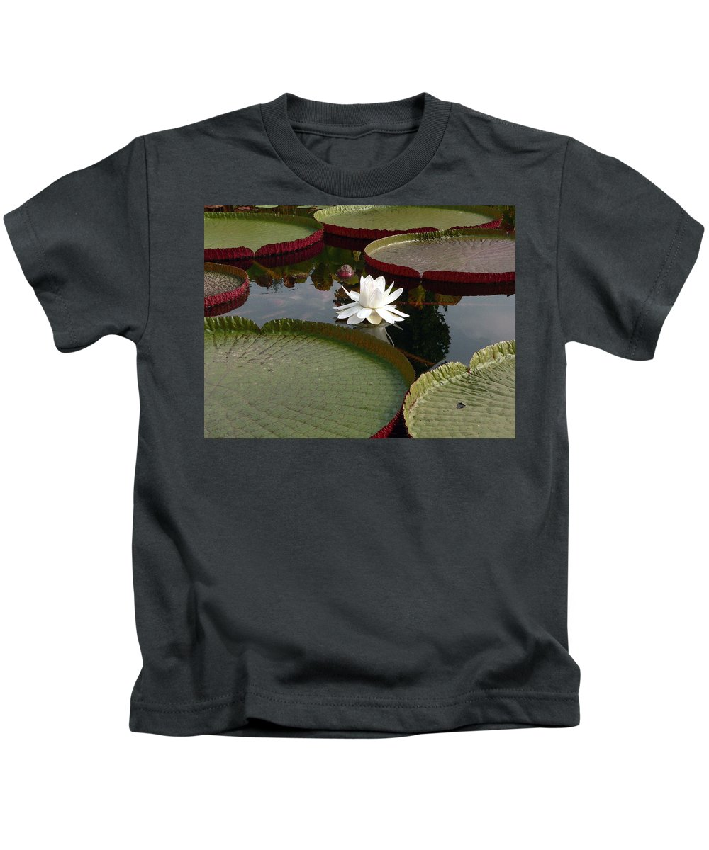 Water Lily Kids T-Shirt featuring the photograph Lily by David Bearden