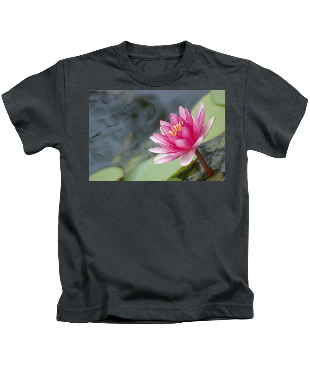 Lily Pads Kids T-Shirt featuring the photograph Lily Pads by Donna Bentley