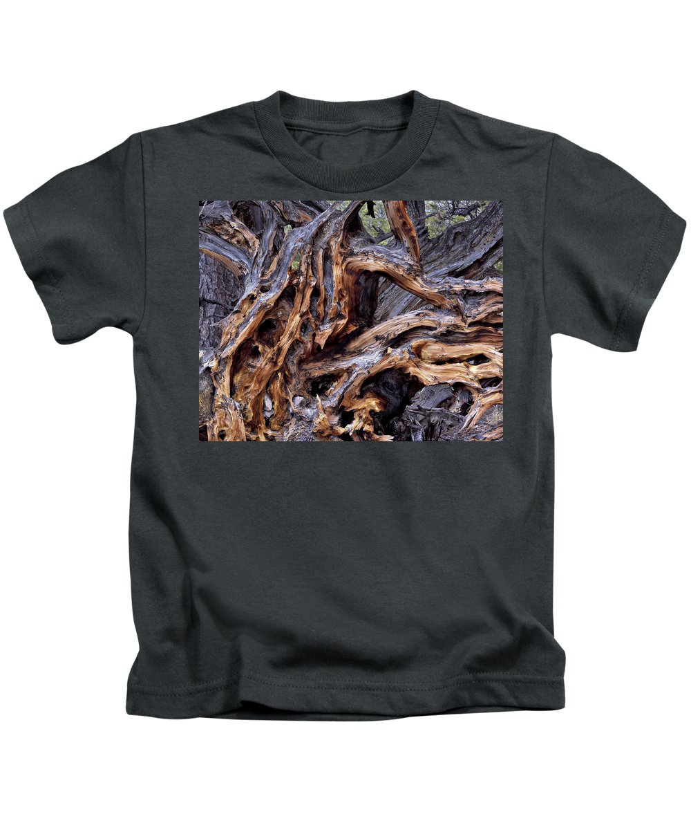 Limber Pine Kids T-Shirt featuring the photograph Limber Pine Roots by Leland D Howard