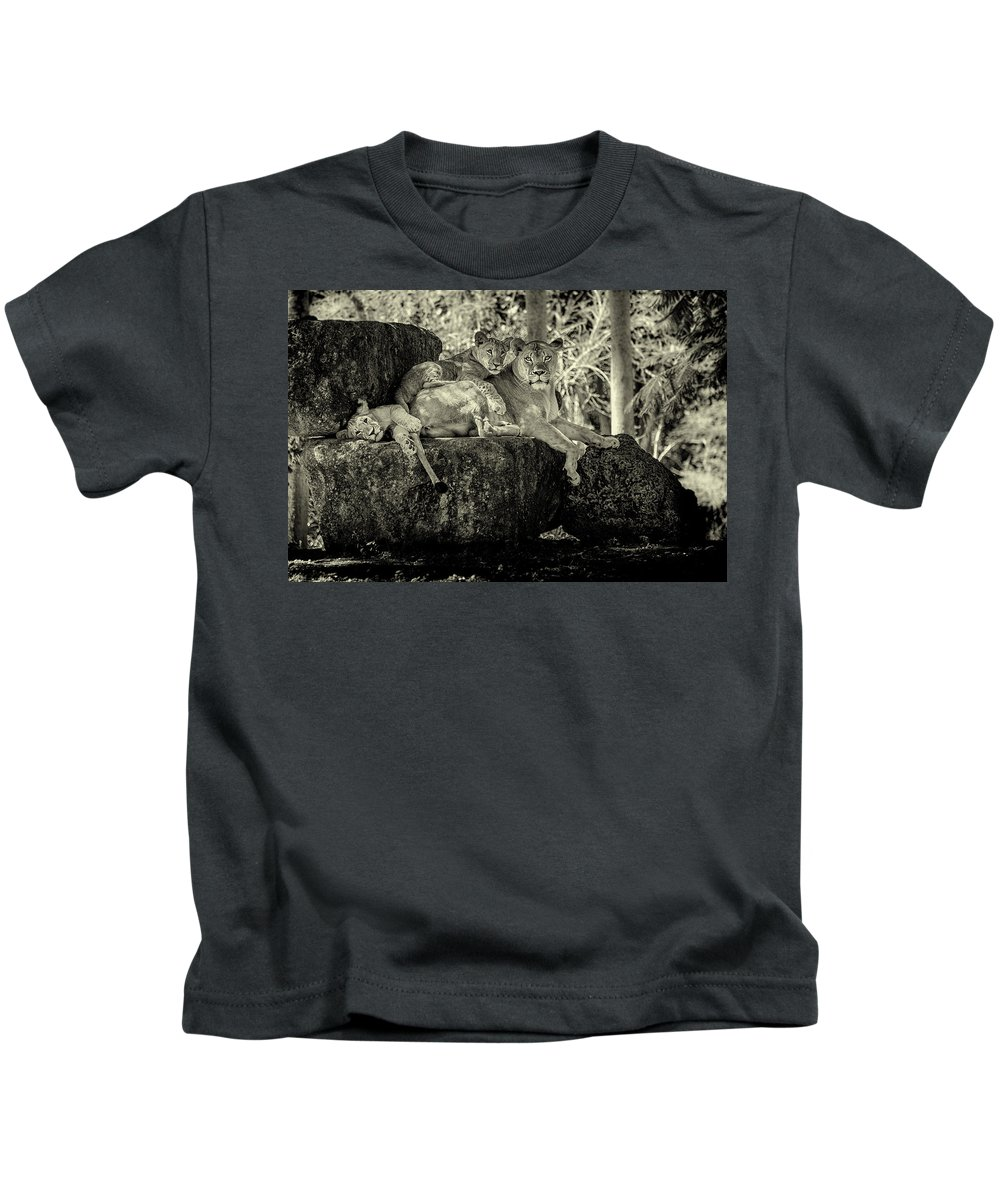 Lion Kids T-Shirt featuring the photograph Lion And Her Cubs by Scott Mullin